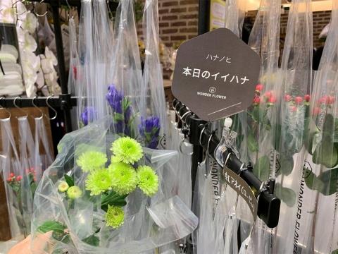 記者が受け取ったスプレーマム。日比谷花壇では首都圏を中心に全国108店でハナノヒのサービスを展開する。あらかじめ袋に入れて什器に掛けているのは新宿小田急エース店など一部で、大半の店舗では陳列してある対象の花から自身で選んで袋に入れて持ち帰るスタイル。今後、受け取れる店舗は増やしていく計画