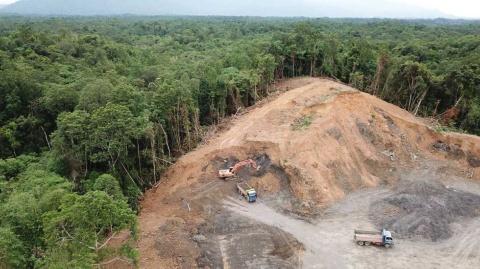 アジアで進んでいる森林破壊の実情のイメージ(写真/Shutterstock)