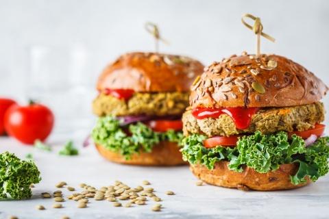 植物性たんぱく質による代替肉を使った食品のイメージ(写真提供/Shutterstock)