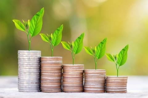 適切な融資が事業の芽を育てる(c)Shutterstock