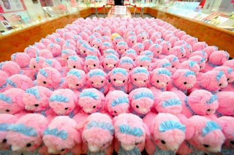 たくさんのピンクのアルパカが、かつて美術品が展示されていたケースに並ぶ。数があるだけで、ちょっとアートっぽい!?