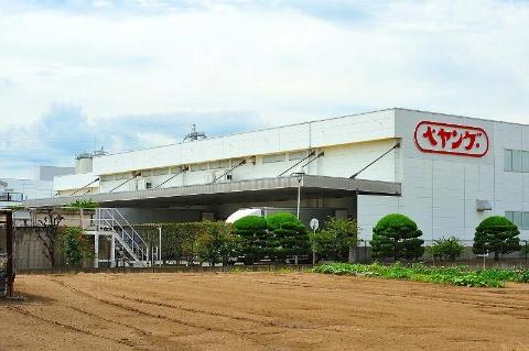 群馬県伊勢崎市に本社を構える、まるか食品。工場は市内に2カ所