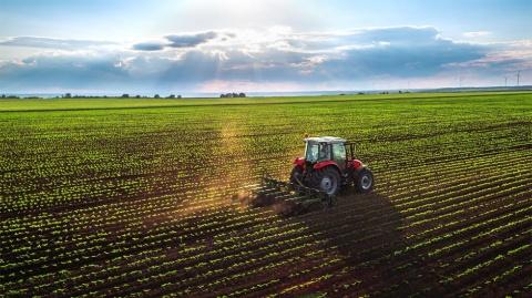 新規媒体の開拓は可能性のある新しい土地を見つけて自分で耕すようなもの ※画像はイメージ(画像提供:Valentin Valkov/Shutterstock.com)