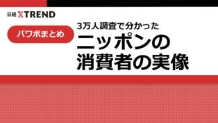 パワポまとめ「3万人調査で分かったニッポンの消費者の実像」
