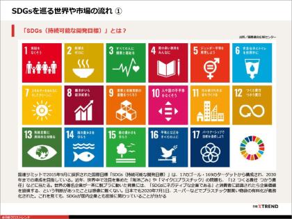パワポまとめ「廃棄物から価値を生む SDGs厳選事例10選」(画像)