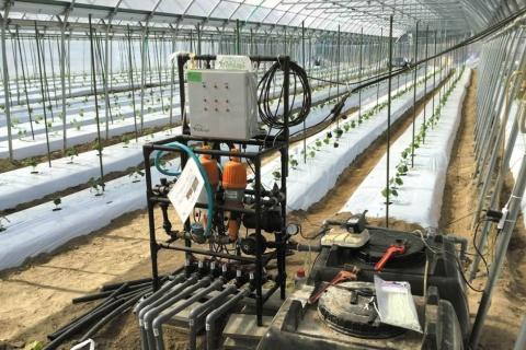 「ゼロアグリ」(ルートレック・ネットワークス)は、ハウス作物の育成状況をAI分析し、成長に合わせて水や肥料を自動調節する