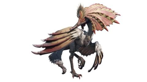 アケノシルム。縄張り意識が強く、敵に会うと翼や独特なとさかを広げて威嚇する