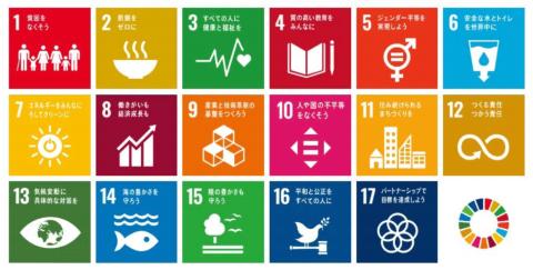 SDGs(持続可能な開発目標)には17のゴール、169のターゲットがある(出所/外務省ホームページ)