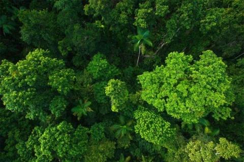 フィリピン西南部のパラワン島の航空写真(画像はファーウェイクラウドのニュースリリースより)