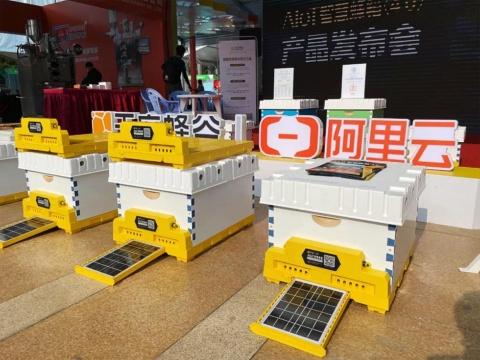 アリクラウドとティエンフーハニーが共同開発したAIスマート養蜂箱の様子(画像はアリババのニュースリリースより)