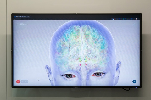 バーチャルヒューマンは人間の脳や神経の情報伝達の働きをシミュレーションしており、視覚、聴覚、触覚で受けた情報に反応する(写真:菊池くらげ)