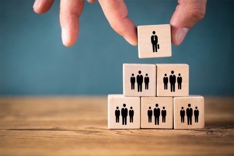 抜本的なDXを推進するには、専用の組織作りが必須となる(写真提供/Shutterstock)