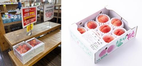 訳アリ品が並ぶコーナー(左)では、例えば桃が1個当たり100円強で買える。贈答用の桃詰め合わせ(右)には、糖度15度以上の桃のみを厳選して集めたセットもあった