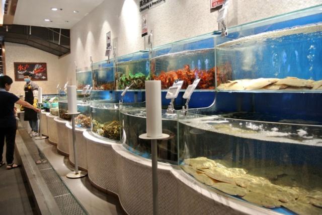7FRESH内のいけす。手前のヒラメのような魚の個体すべてにQRコードが貼られていたのが分かった。ここで購入すると調理してもらって店内で食べられる