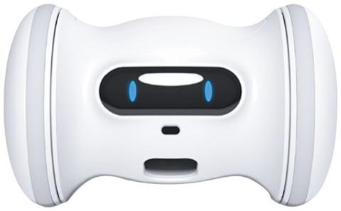 留守中の犬や猫の遊び相手になる 新機軸ロボット家電(画像)