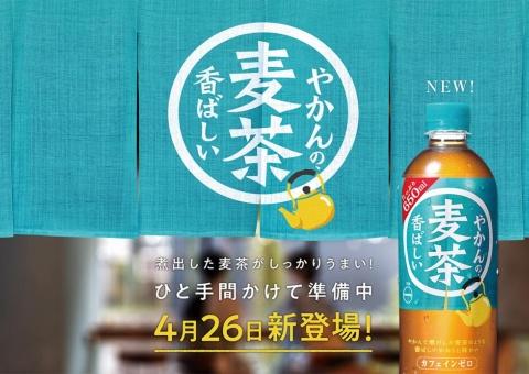 若者は緑茶より麦茶? コカ・コーラ新顔「やかんの麦茶」の勝算(画像)