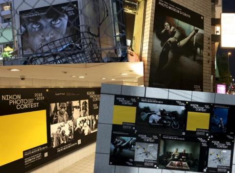 渋谷の街の各所に張り出された歴代受賞作品。「Street Exhibition」より(写真提供/ニコン)