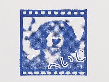 犬の写真をベースに、ポジフィルム風のフレームや名前をあしらい、スタンプを作ってみた。期待していた以上の再現性の高さで納得の仕上がり