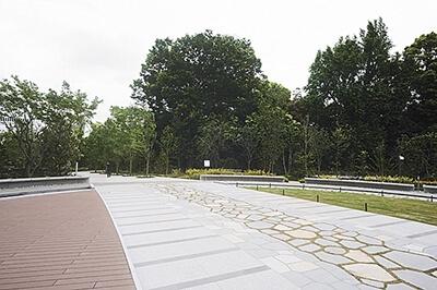 """隣接する清水谷公園へ抜ける「光の森」。""""赤プリ""""の庭園にあった木を移植した"""