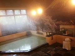 源泉かけ流し天然温泉の大浴場が男女各1カ所ある。大浴場に抵抗のある外国人観光客のために、水着着用の入浴タイムを1時間ほど設ける予定