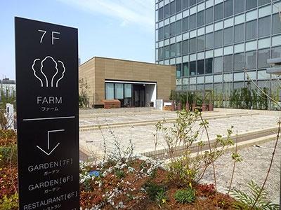 四季を通じて約100種類の野菜栽培を楽しめる会員制の貸菜園「ソラドファーム ニュウマン」。全部で47区画。土の厚さが40cmあるため、根菜類も本格栽培できるという。手ぶらで気軽に菜園を楽しめるよう、基本的なツールは施設に設置し、野菜の苗や種なども無料で利用可能