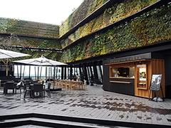 屋上のオープンテラス「キリコテラス」には緑を配した「グリーンサイド」と、広い水盤が特徴の「ウォーターサイド」のふたつのゾーンがある