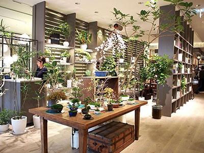 観葉植物や多肉植物に加え、盆栽も多数展開する「ネオグリーン」
