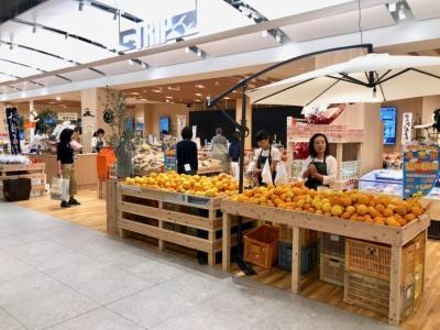 広島県の各自治体と連携し、瀬戸内、広島の名産品を集めた「瀬戸内TRIP」。農産物や海産物類の加工品を中心に柑橘類の菓子などを販売