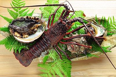伊勢エビ、フグ、アワビ、松坂牛など三重県内には高級食材が豊富。地産地消を基本としながらも、レストランのネットワークを生かし、全国から厳選食材を取り寄せている