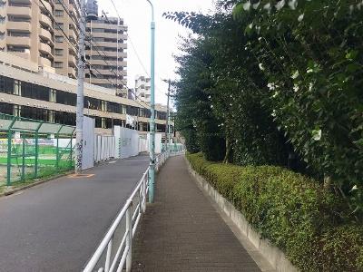 歩道をしばらく歩くと渋谷ブリッジが見えてくる。街灯はあるがかなりさびしい印象