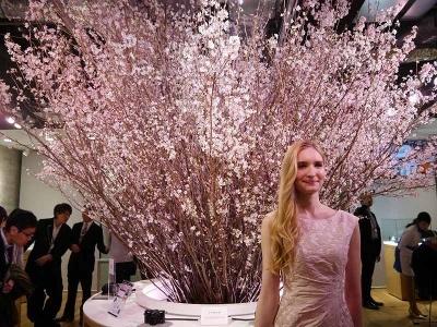 開店にあわせて、そら植物園の協力を得て、ソニーストア札幌店内に、実物の桜を展示。ひと足早い札幌の春を店内に実現し、札幌の人たちを驚かせてみせた。
