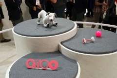 「aibo」の愛らしい姿は海外メディアからも好評。海外展開も検討中という