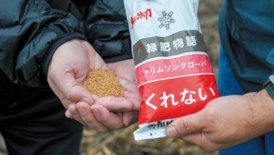 クリムソンクローバーの種。10アール当たり1.5kgを播種(はしゅ=種まき)