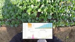 農場の各地に取り付けたセンサーの情報などをb.g.の画面に表示して確認しながら作業するイメージだ(メガネスーパーの動画より)