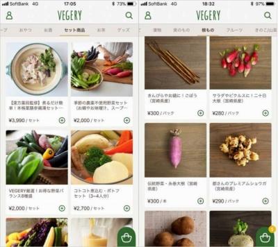 「糸巻き大根」など、関東ではあまり知られていない宮崎県の伝統野菜も購入できる。オーガニック野菜のセットも人気