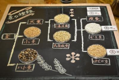 「キリン 麦茶」には二条大麦と六条大麦の「皮麦」、新開発した「むき麦」、希少性の高い「はだか麦」がブレンドされる