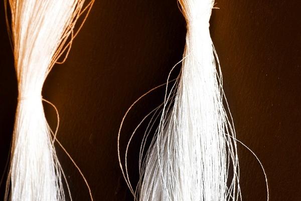 """テープ状の和紙に""""より""""をかけ、細く長くより合わせて「糸」にしたもの。これが和紙糸だ(画像提供:細川機業)"""