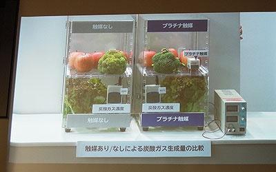 7日間保存後の比較。従来の製品に比べて、炭酸ガスの濃度が約1.2倍高まった新製品。ブロッコリーの緑が鮮やかだ